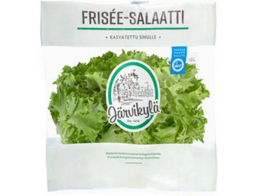 Frisée-salaattipussi