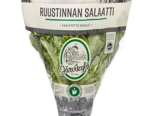 Ruustinnan salaatti